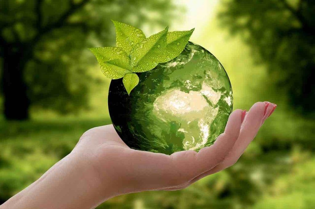 Quel est le rôle de la science environnementale?